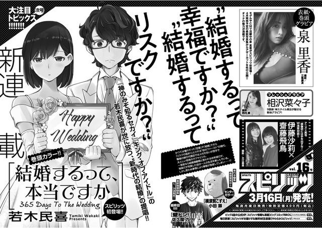 spi2015_jigouyokoku