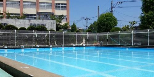 【画像】水泳授業中の女子高生にY字バランスをさせた結果wwwwwwwwwのサムネイル画像