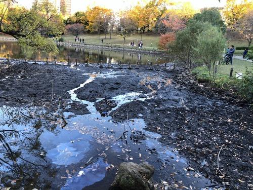 【画像)「池の水全部抜く」、エロくなるwwwwwwのサムネイル画像