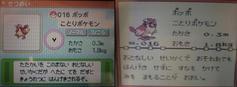 19959195.jpg