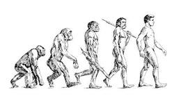 biological-evolution1013