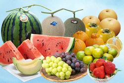 teikibin_fruits_41