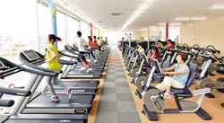 holiday_gym