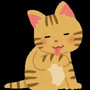 pet_cat_kedukuroi