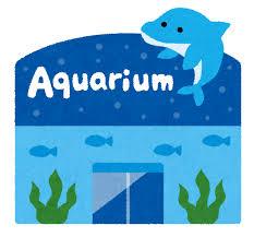 【画像】水族館がデートを成功させるためにあの手この手で必死に対策してくれるプロジェクトが始動wwwwwwwww