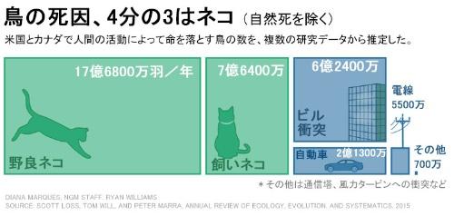 【画像】鳥の死因の75%が猫のせいらしいぞwwwwwwww