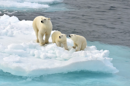 【驚愕】北極圏でとんでもない気温が観測されるwwwwwwwwww