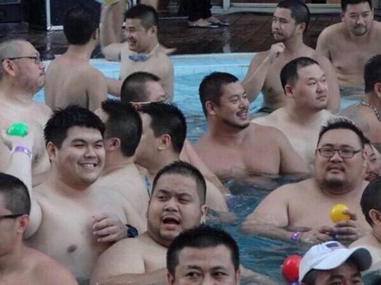 【画像】 プールで泳ぐネコ達がかわいいと話題にwwwwwww