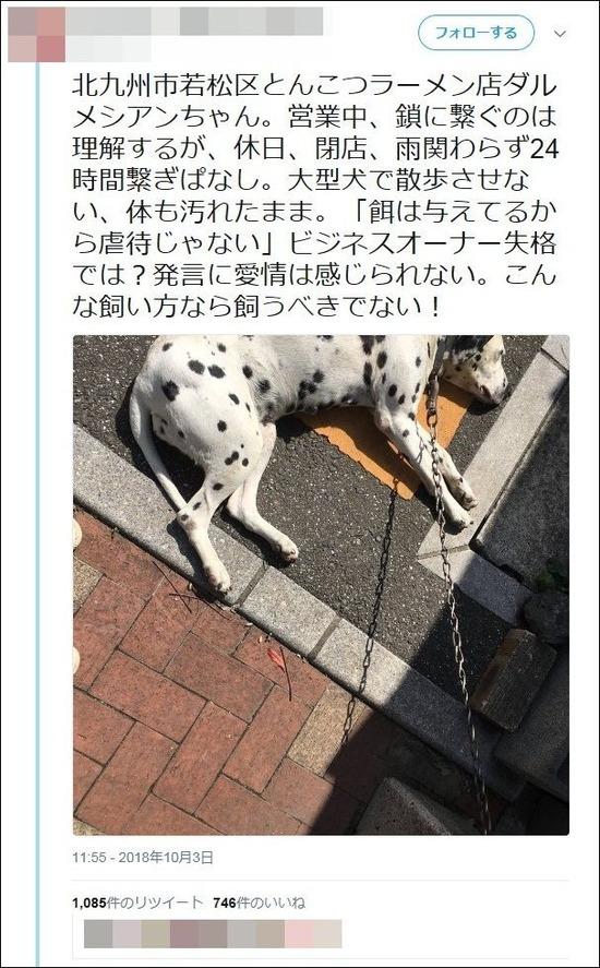 【画像】ラーメン屋の犬、いつも鎖でつながれたままで雨の日も置き去り「虐待ではないか?」と非難殺到wwwwww