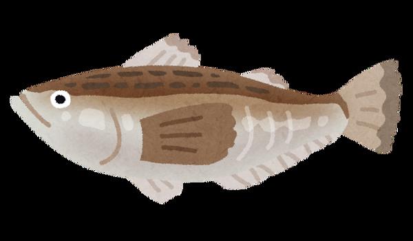 fish_hatahata