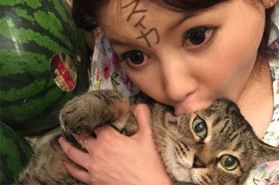 【ビビったw】中川翔子さんの愛猫「マミタス」の現在がでけえwww(画像あり)