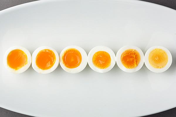 egg00_top