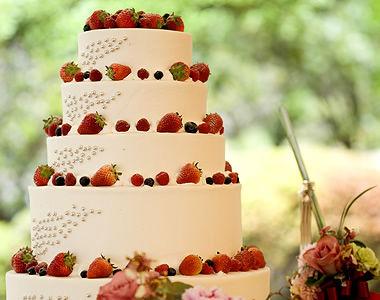 cuisine_cake_ph1