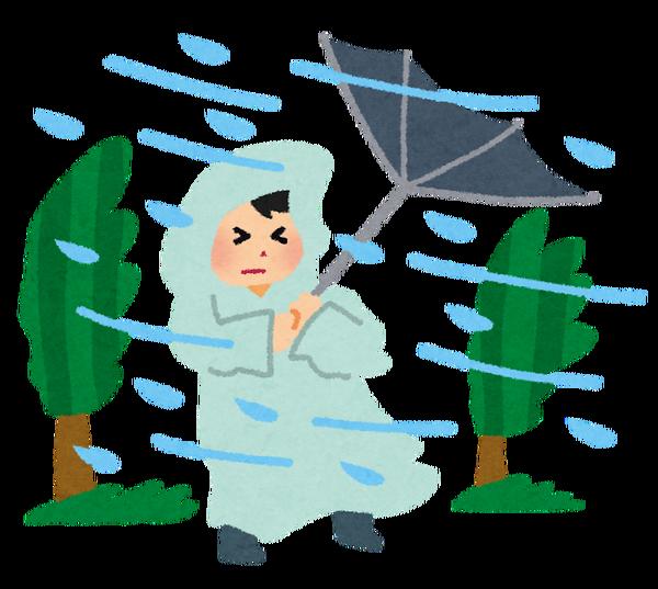 【アカン!!】台風中継でぐうかわ女子アナ・ミタパンさん、吹っ飛ぶwww