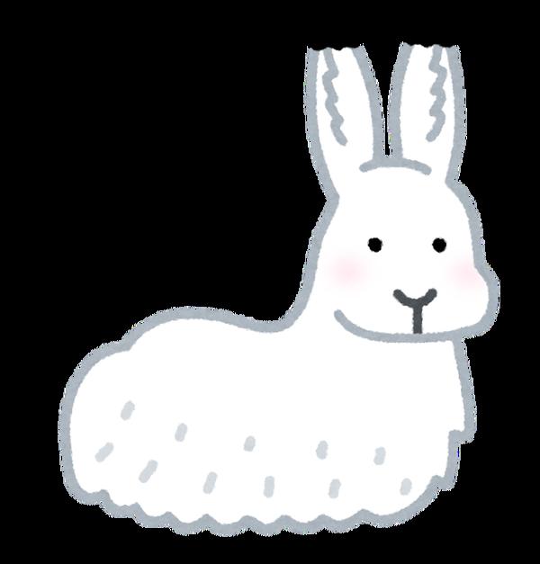 animal_hokkyokuusagi