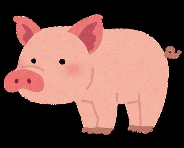 animal_pig_buta