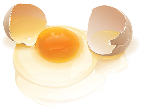 broken_egg-vector