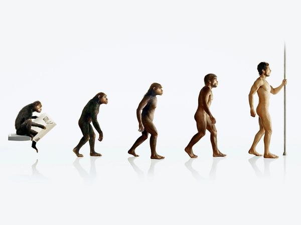ユーモア人間の進化ホーム装飾キャンバスポスター版画