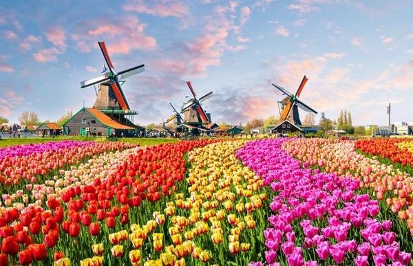 【画像あり】ワイ、オランダのストリートビューを見て震える…