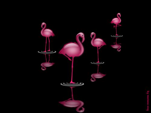 pink_spots_by_haruwen