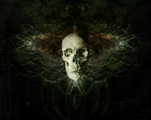 Radioactive_Mushroom_Trip_by_theCasualties