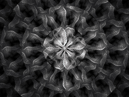 Snake_flower_by_hmn