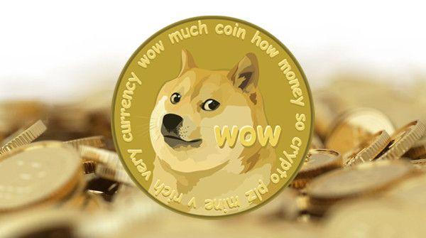 柴犬コイン
