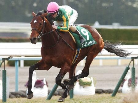 【競馬】ディーマジェスティ、マカヒキというサトノダイヤモンド三冠を阻むために生まれてきた馬達