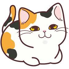 島崎遥香さんが飼ってる猫のサイズがヤバすぎる