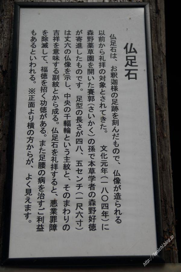 11_16_48