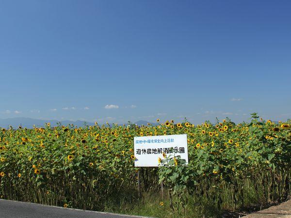 2012_09_28