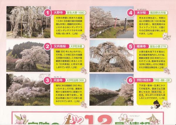 宇陀市桜マップ3