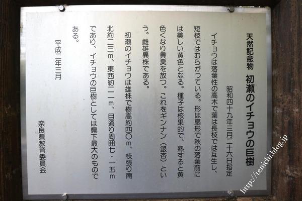 11_21_07(1)