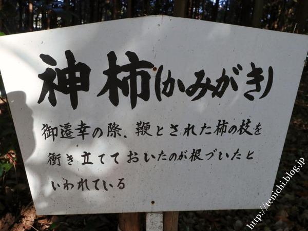 12_09_18(1)