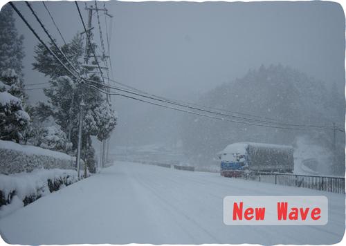 平成22年12月31日 大雪1