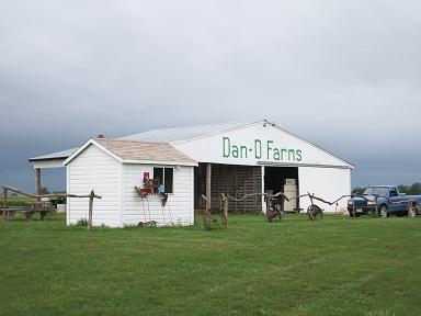dan-d-firm