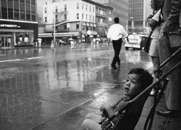 改定版、雨を見る