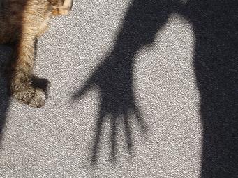 手の影と足の影