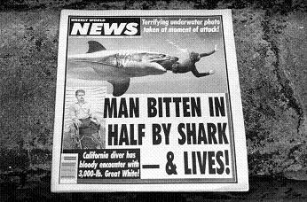 人食いザメだ