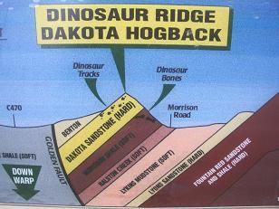 恐竜の地層