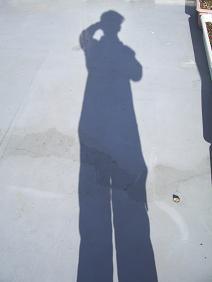 僕の影だ!