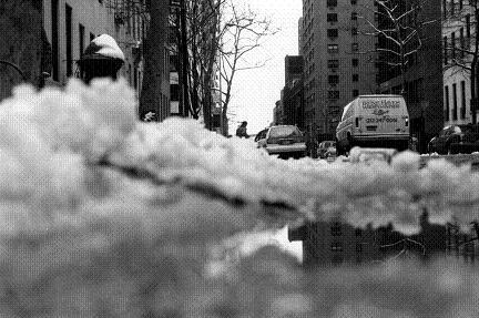 マンハッタン雪
