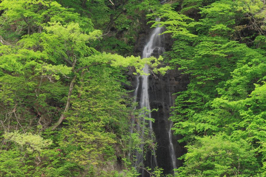 2559-岩原の滝-002