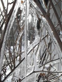 氷のコーティング