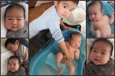 泰生2ヶ月