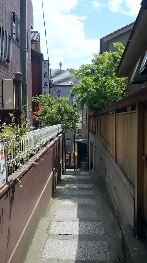 ランチ限定「ふわとろ親子丼」 神楽坂 別邸 鳥茶屋へ訪問