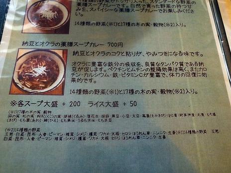 納豆とオクラの薬膳スープカレーの説明
