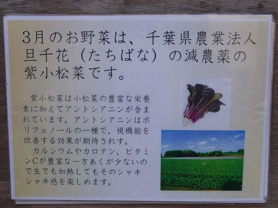 紫小松菜の説明
