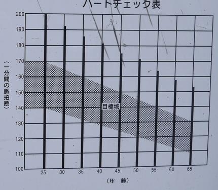 P1330175 - 拡大