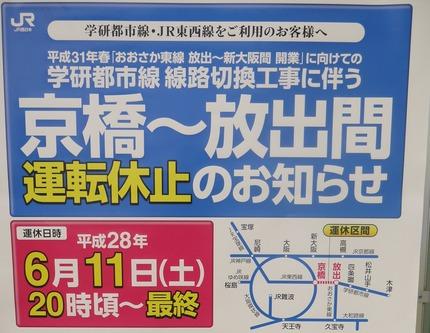 P1680275 - 拡大
